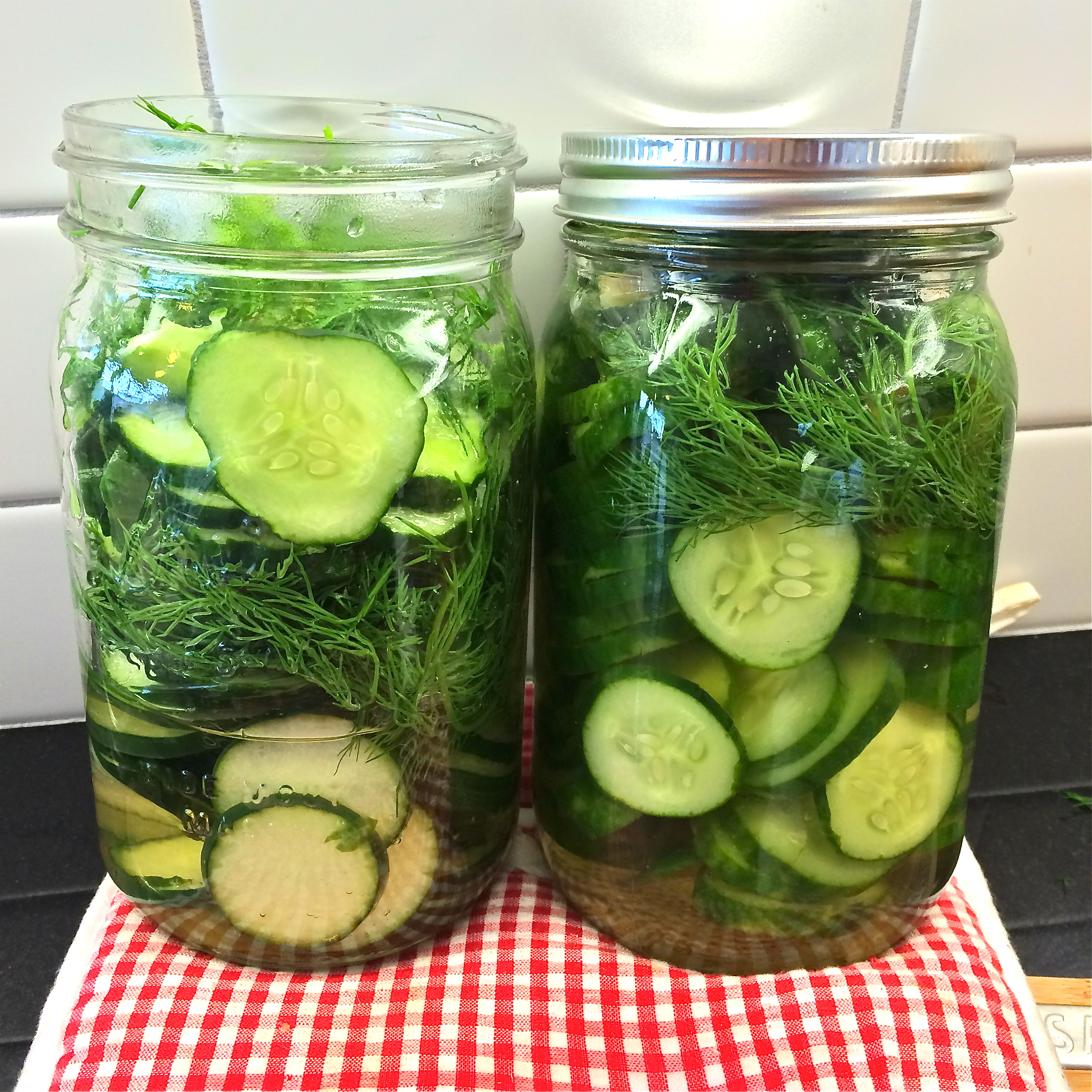 Fridge_Pickles_900174322.jpg