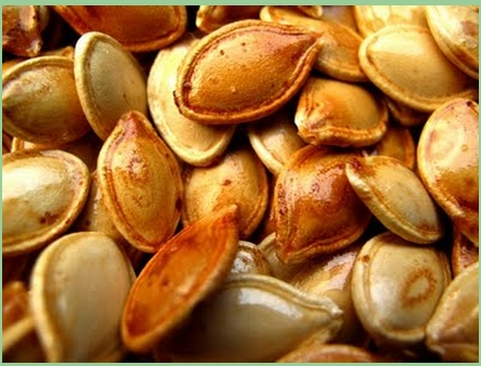Pumpkin_Seeds_484289111.jpg
